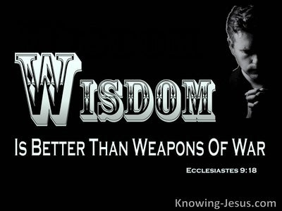 Ecclesiastes 9:18 Wisdom Is Better Than Weapons Of War (black)
